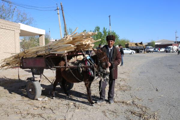 Узбекистан. Хива. Ичан-кала— любовь навсю жизнь!