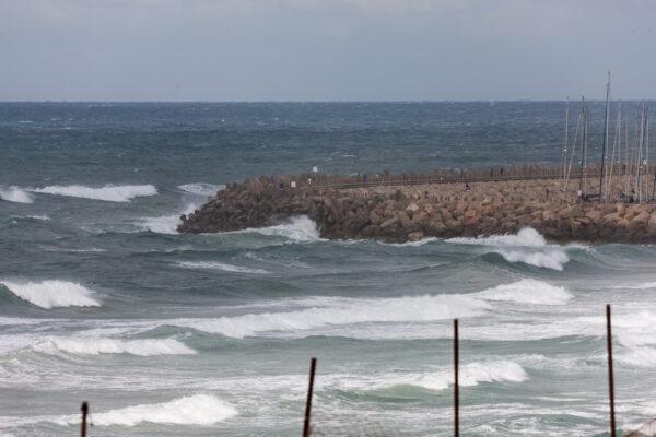 Немного нашей Израильской зимы.