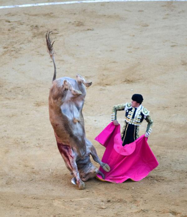 Las Fallas— весёлое огненное безумие вВаленсии.