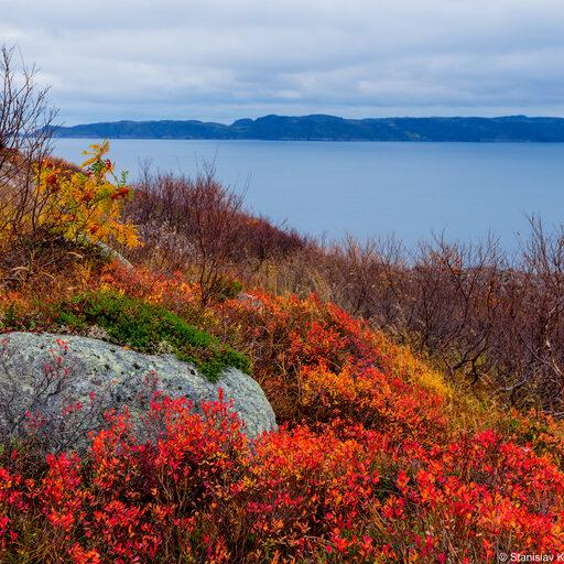 Осенние краски Заполярья