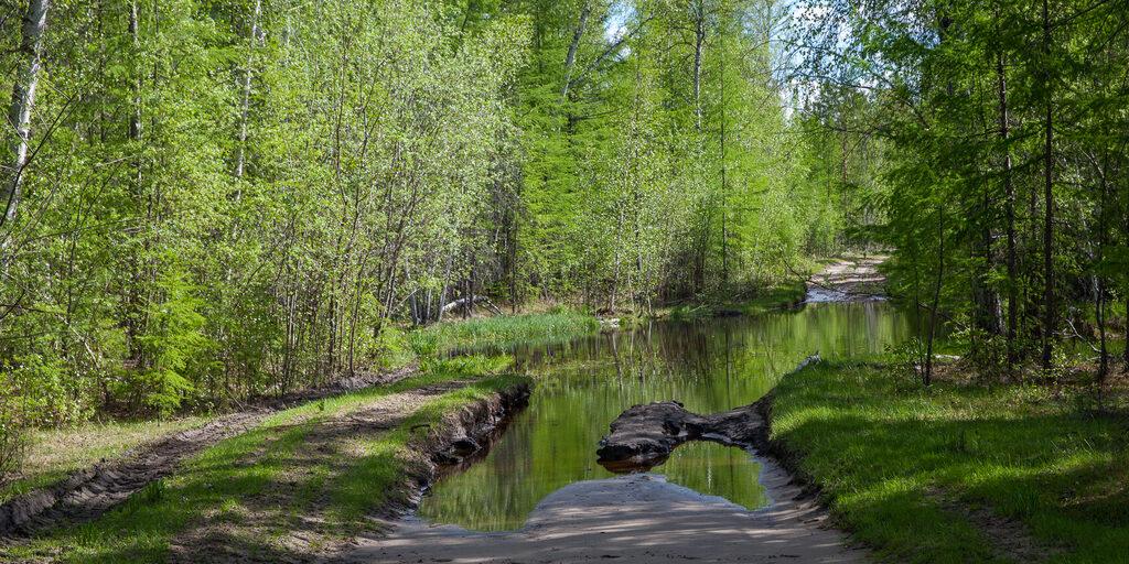 Якутия, сплав по р.Синяя. Часть 2, бросок к реке.