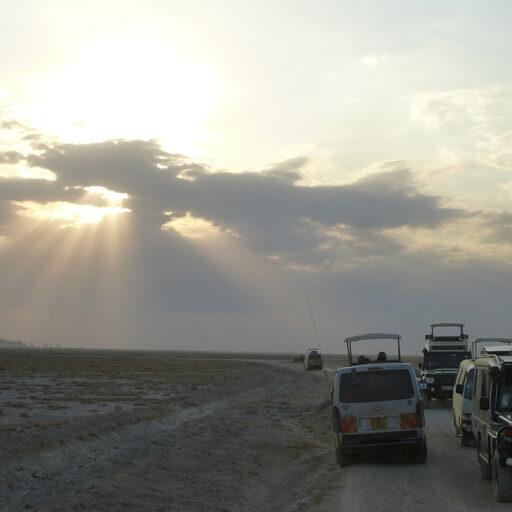 Кенийское солнце. Амбосели. Царство слонов