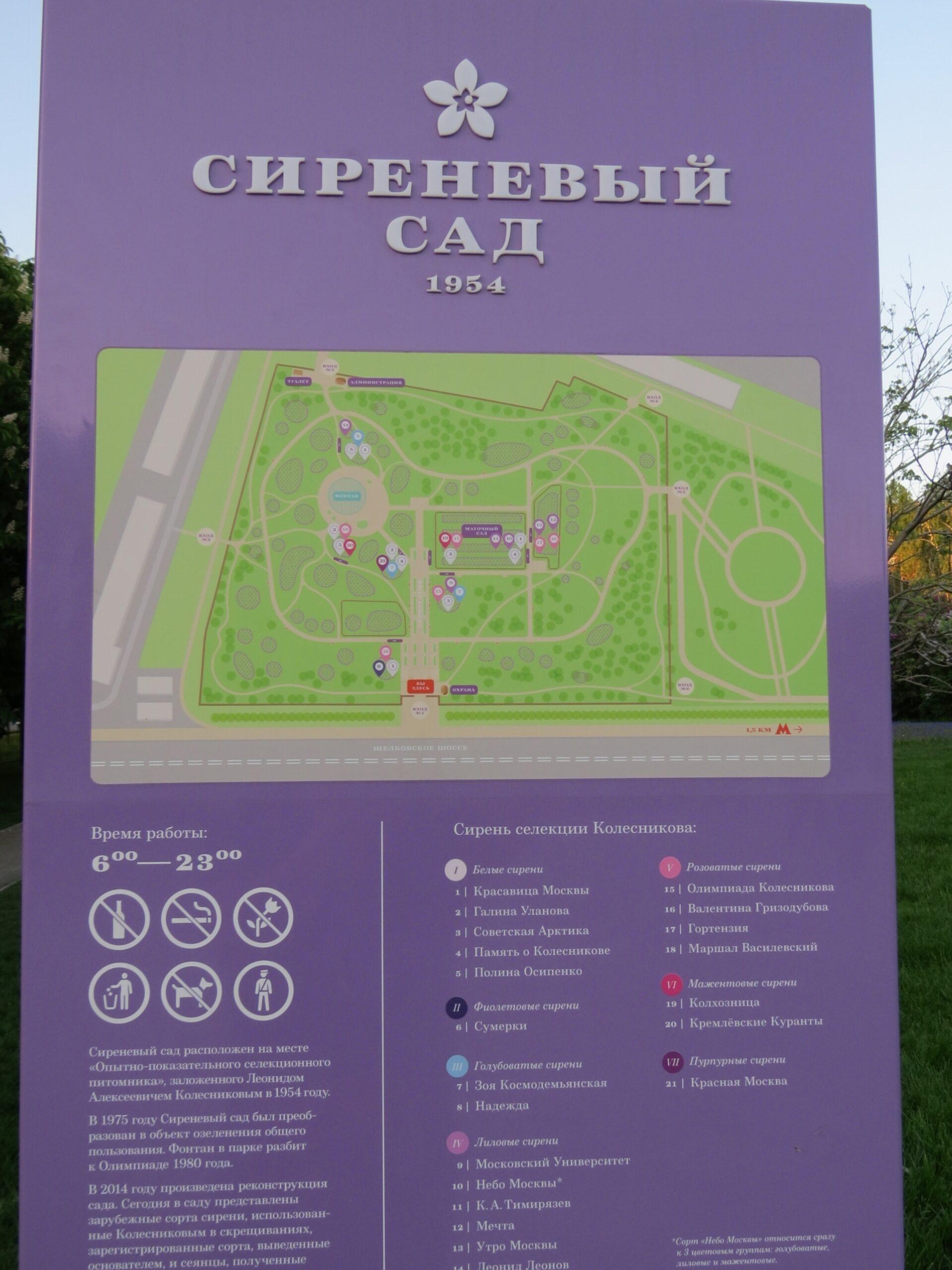 Москва, Сиреневый сад вцвету