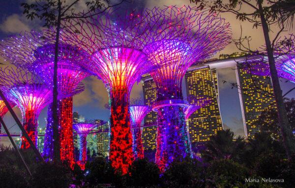 Сингапур-ярче яркого!