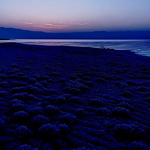 Февраль. Рассвет на Мёртвом море.