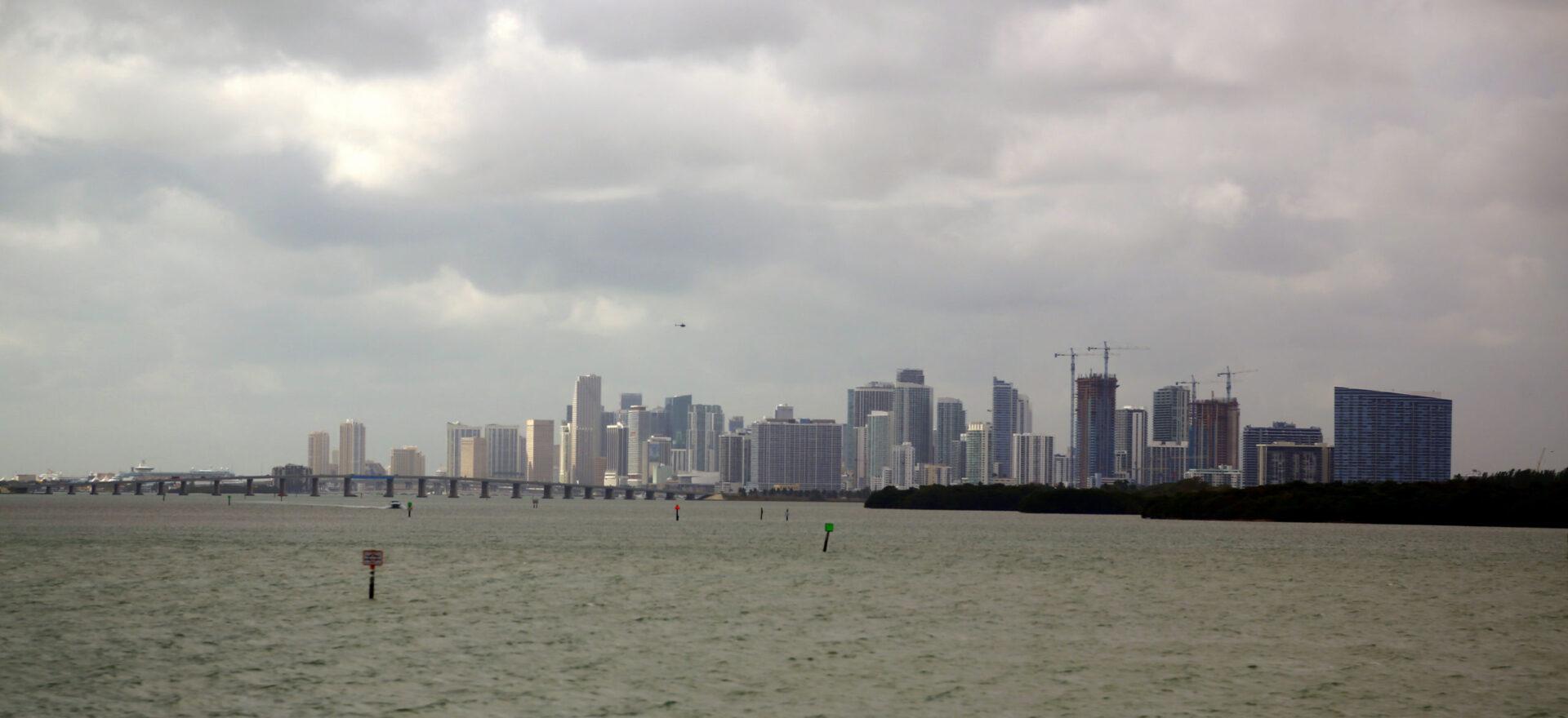 Майами. Фенита лякомедиа
